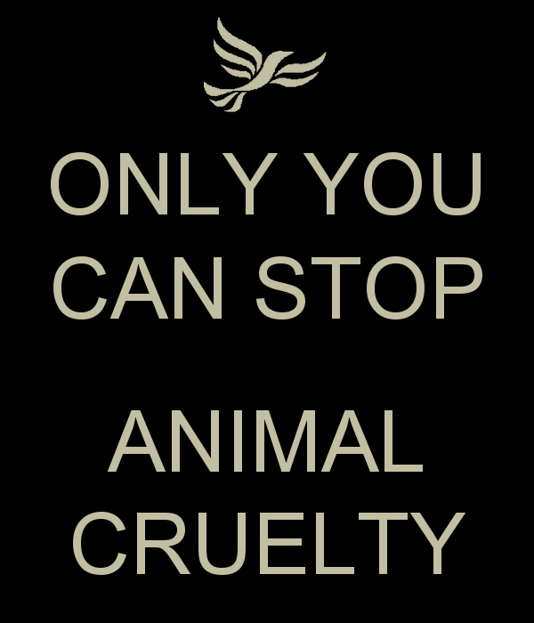 only-you-can-stop-animal-cruelty1.png
